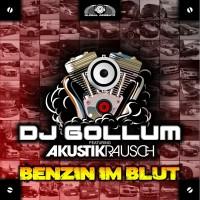 GAZ016 | DJ Gollum feat Akustikrausch - Benzin Im Blut